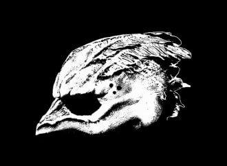 Legend of the Seagullmen – Legend of the Seagullmen (Dine Alone Records)